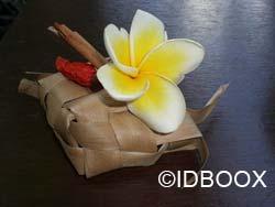 IDBOOX_Ebooks_Indonesie2008