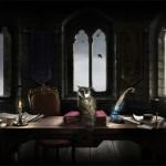 Pottermore_plume_magique_05_IDBOOX