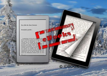 Ebooks US : 85% des éditeurs sont optimistes