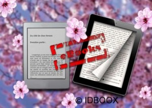 ebook AAP 2013 USA IDBOOX