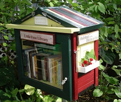 Little free library 2 IDBOOX