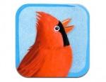 Un mot est un oiseau appli livre IDBOOX