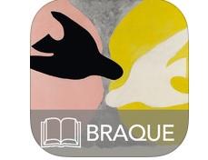 Expo Braque ebook IDBOOX