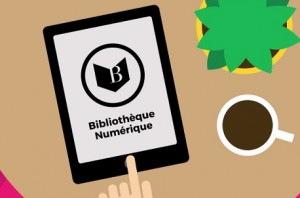 bibliotheque pnb
