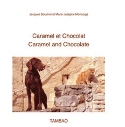 caramel et chocolat ebook interactif enfant