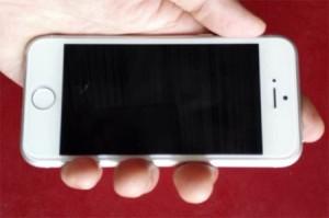 iPhone-6C-03