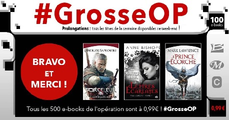 grosse op 2 bon plan ebook