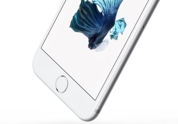 iPhone 2017 sans bouton d'accueil