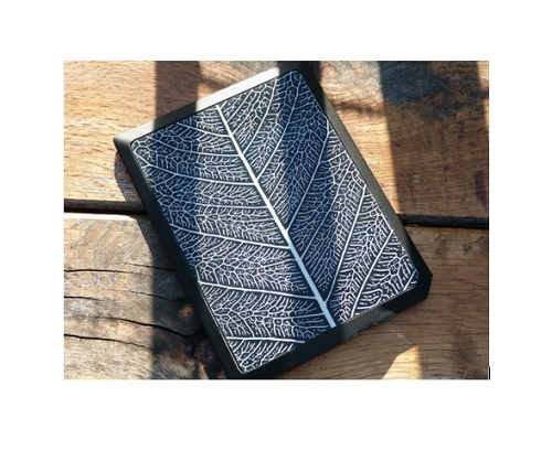 leaf-solar-cover-ebook-bookeen