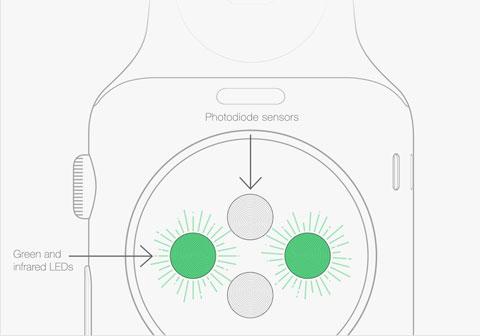 apple-watch-capteur-cardiaque