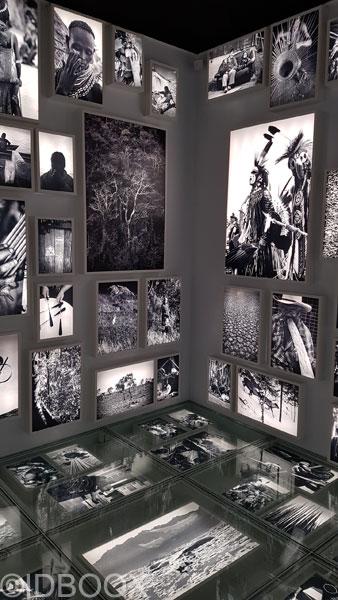 musee-de-lhomme-05
