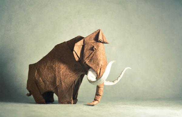 origami-gonzalo-garcia-calvo-05