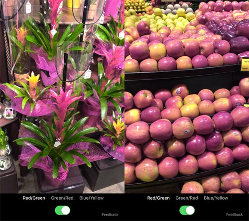 app-microsot-daltonien