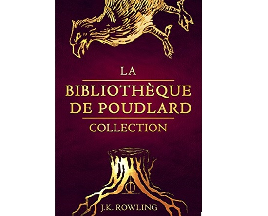 La Bibliothèque de Poudlard Collection harry potter
