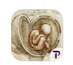 carnet anatomie leonard de vinci appli