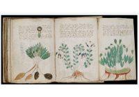 Intelligence Artificielle pour comprendre manuscrit de Vonyich