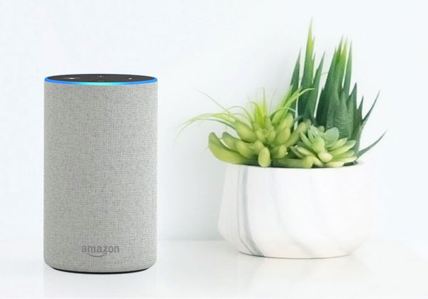 Amazon Echo et Alexa bientôt en France