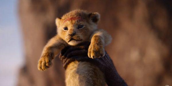 Le roi lion nouvelle vidéo Disney