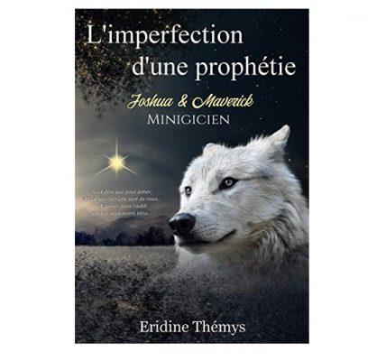 Eridine Thémys ou Schevalier Kira livre