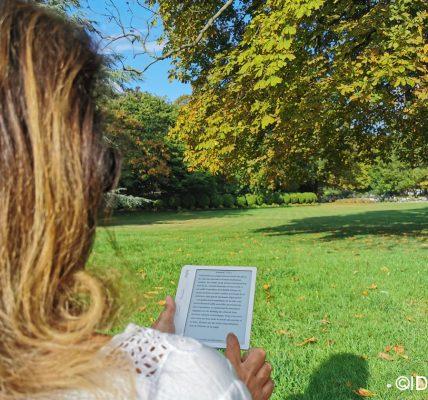 livres numerique et bibliotheque france 2020