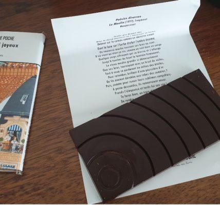 chocolat de poche livre