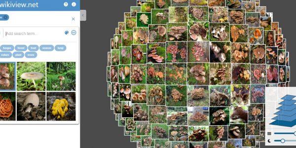 wikiview moteur de recherche photos