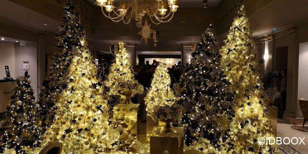 Sélection Noël 2019 - 10 beaux livres à offrir en cadeau