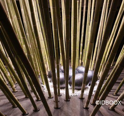 Expo Fondatino EDF Black Bamboo