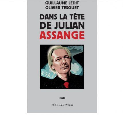 dans la tete de julian assange livre ebook