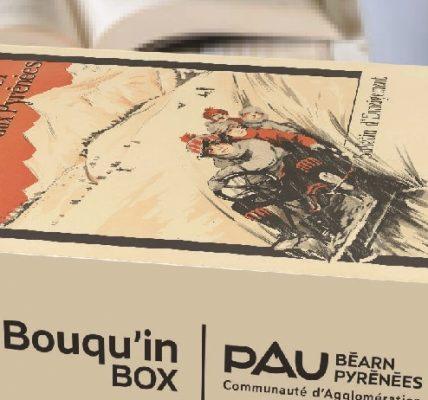 ma bouquin box bibliotheque box livre