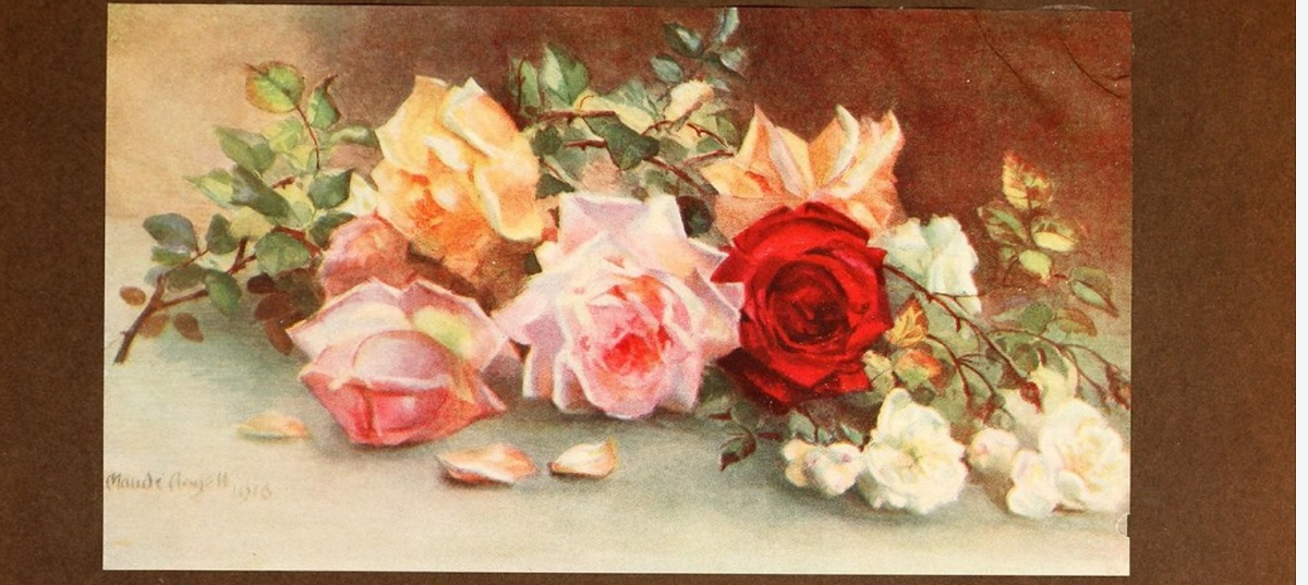 telechargement gratuit illustration faune et flores