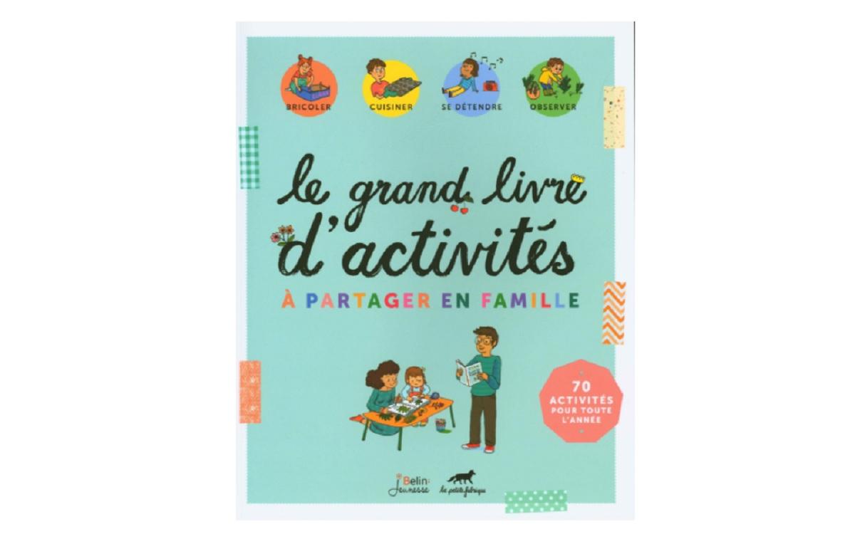le grand livre d activites a partager en famille
