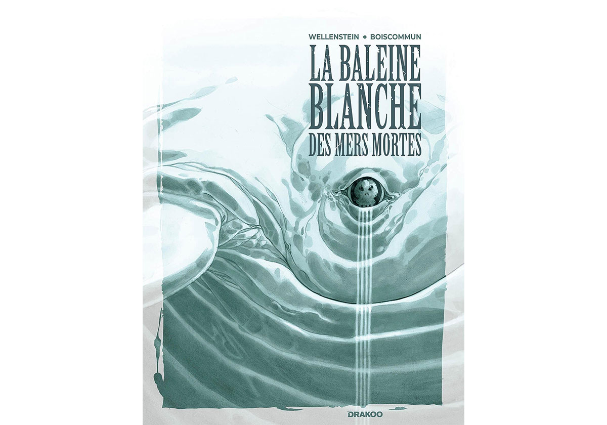 La-Baleine-blanche-des-mers-mortes-interview-Aurelie-Wellenstein-